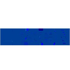 Epson-Origineel