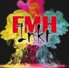 FMH-Inkt