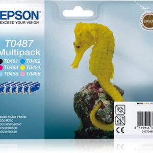 Epson T 0487
